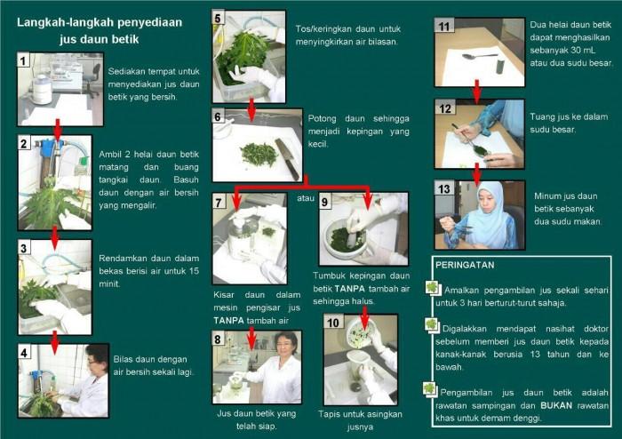 Cara buat jus daun betik
