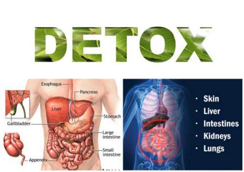 Agen detox dalam badan semulajadi