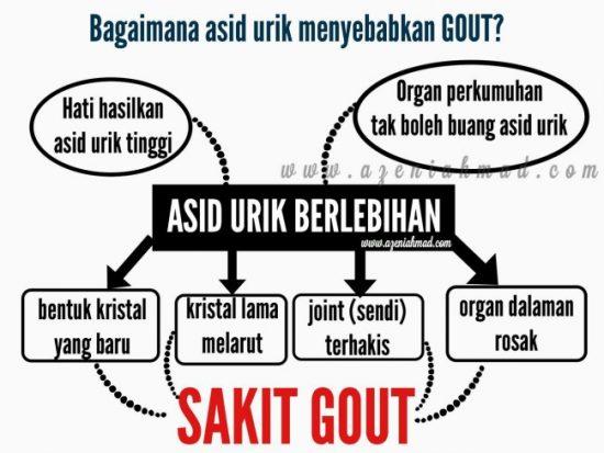 punca gout