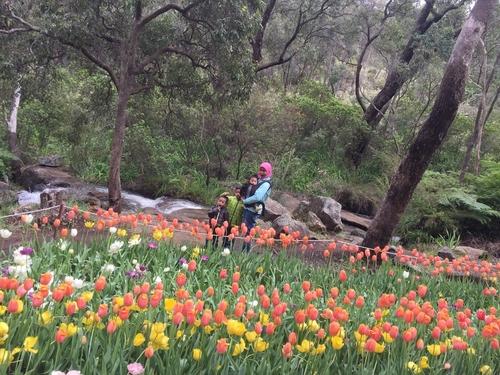 araluen botanical garden Perth